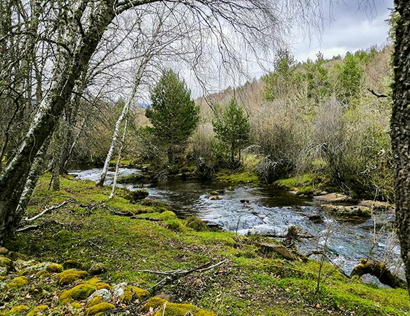 Paseo en el Río Razón cerca de El Chorrón