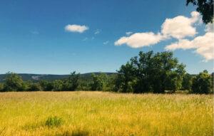 ruta-btt-el-valle-la-sierra-tabanera-soria-ni-te-la-imaginas.jpg