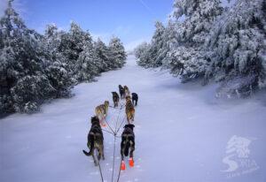 Actividades en la nieve Santa Inés