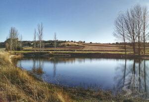 Laguna de Iruecha