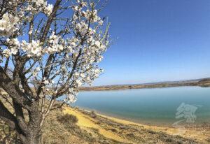Laguna de Monteagudo