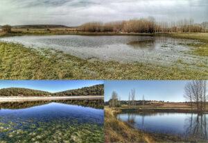 Lagunas temporales Soria