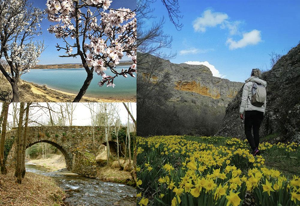 Primavera en Soria
