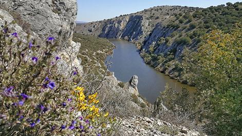 Ruta de los Miradores del Duero en Soria