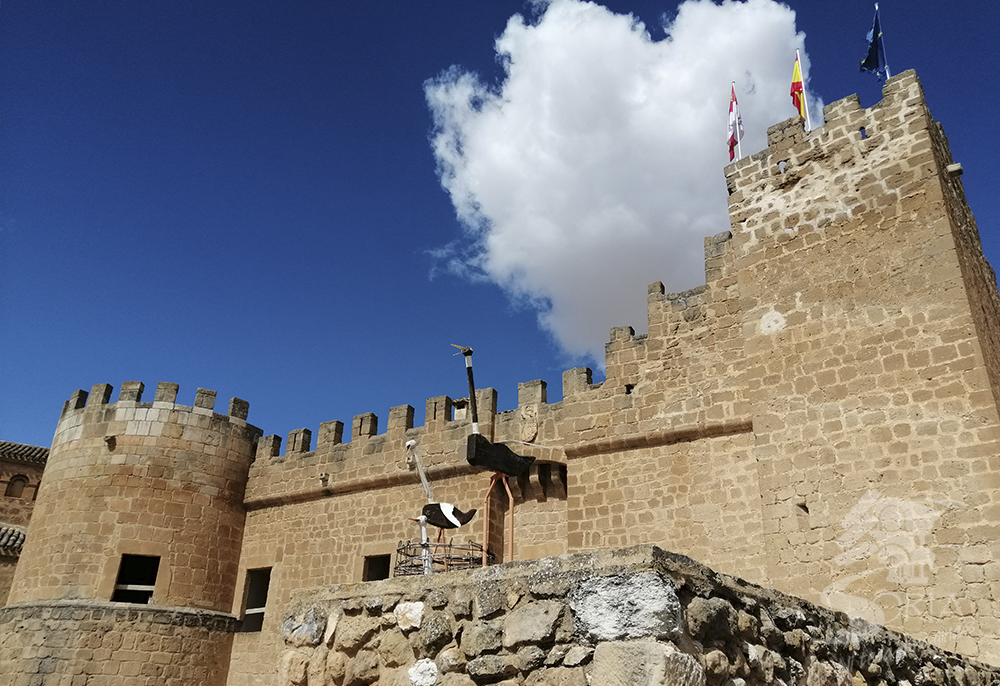 Castillo de Monteagudo de las Vicarias